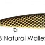 023naturalwalleye